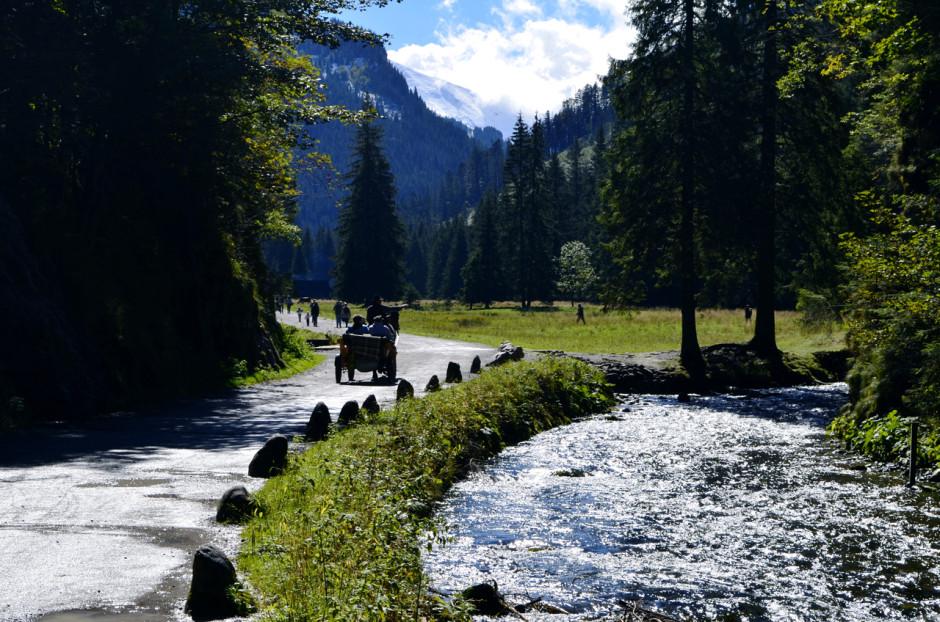 Dolina Kościeliska - główna trasa